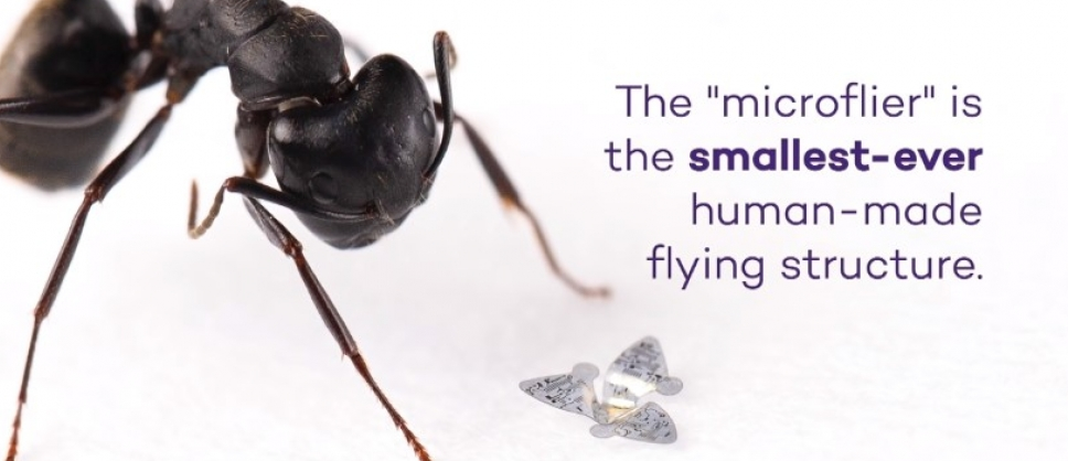 Dünyanın ilk uçan mikroçipi